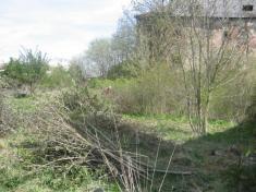 Parkové úpravy obce Řenče